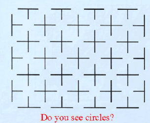 y_do_you_see_circles